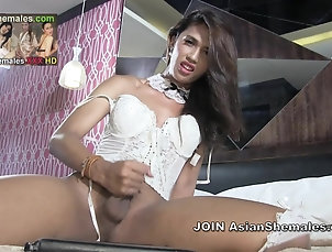 Shemales (Shemale);Ladyboys (Shemale);Lingerie (Shemale);Masturbation (Shemale);Sex Toys (Shemale);Asian Shemales;HD Shemales AsianShemale...