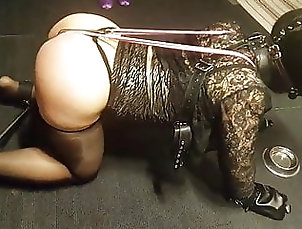 Ladyboy (Shemale);Amateur (Shemale);BDSM (Shemale);Lingerie (Shemale);Domination (Shemale) Lovely Asian...