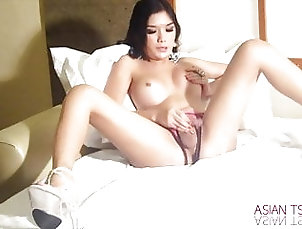 Ladyboy (Shemale);Amateur (Shemale);Lingerie (Shemale);Masturbation (Shemale);Small Tits (Shemale);Solo (Shemale);HD Videos;Trans World Asia (Shemale);Mature (Shemale);Hot Shemale (Shemale);Sexy Shemale (Shemale);Asian Shemale (Shemale);Fuck Shemale (Shemale);Shemale Sex (Shemale);Shemale JOI (Shemale);Shemale Cock (Shemale);Shemale Guy (Shemale) Sexy fuck puppet...